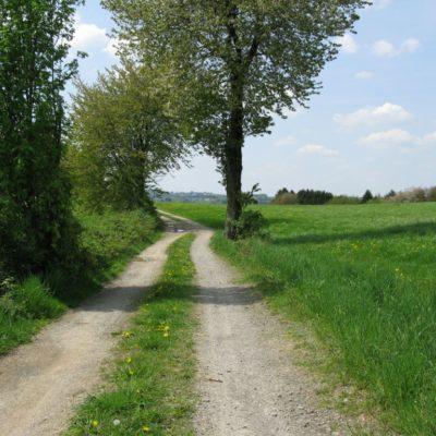 Wanderweg Vilkerath